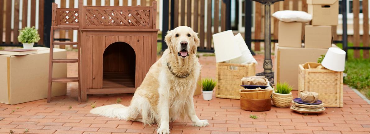 Wooden Princess Dog House Large/ Medium Pet Shelter Weather Resistant Pink
