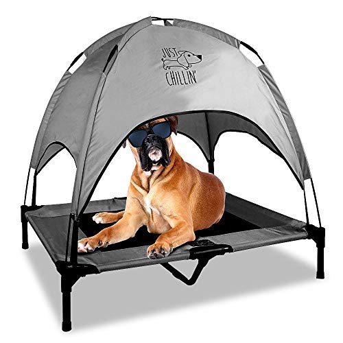 Floppy-Dawg-Just-Chillin-Elevated-Dog-Bed-Medium-and-Large-Size-Dog-Cots-in-a-Variety-of-Colors-Removable-Canopy-Used-as-an-Indoor-or-Outdoor-Dog-Bed-Lightweight-and-Portable-Chill-in-Style-0
